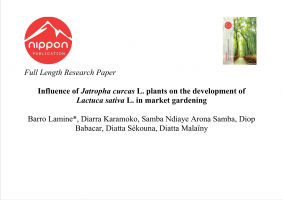Influence of Jatropha curcas L. plants on the development of Lactuca sativa L. in market gardening
